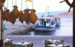 Food by the sea
